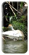 Cattle Egret Cooling Off In The Lake IPhone Case
