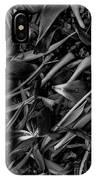 Tulips Wilting IPhone Case