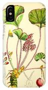 Illustrations Of The Flowering Plants And Ferns Of The Falkland Islands IPhone Case