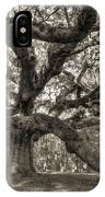 Angel Oak Live Oak Tree IPhone Case