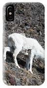 Dahl Sheep, Turnigan Arm IPhone Case