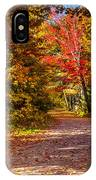 Autumn Season In Killarney IPhone Case