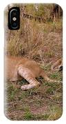 Zimbabwe IPhone Case