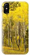 Rocky Mountain Autumn IPhone Case