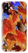 #199 Red Maple IPhone Case