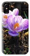 Crocus 0083 IPhone Case