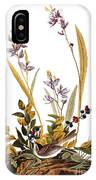 Audubon: Sparrow, 1827-38 IPhone Case