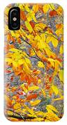 Autumn Beech Leaves IPhone Case