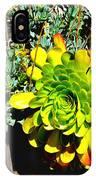 Succulent Study 2 IPhone Case
