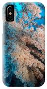 2 Cherry Blossoms  IPhone Case