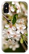 Cherry Flowers IPhone Case