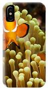 Clown Anemonefish IPhone X Case