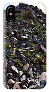 Colorful Lichens Growing On Rocks Along Monument Ridge, In The Eastern Sierra Nevadas IPhone Case