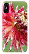 Dahlia Named Akita IPhone Case