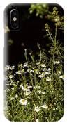 Daisy Daisy IPhone Case