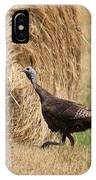Female Eastern Wild Turkey IPhone Case