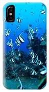 Hawaiian Reef Scene IPhone Case