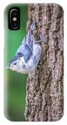 Huthatch Bird  Nut Pecker In The Wild On A Tree IPhone Case