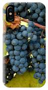 Marechal Foch Grapes IPhone Case