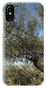 Olive Trees IPhone Case