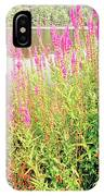 Pond In The Bershire Mountains, Massachusetts IPhone Case
