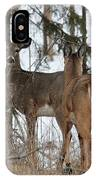 White-tailed Deer IPhone Case