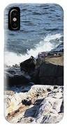 2010 Nh Seacoast 1 IPhone Case