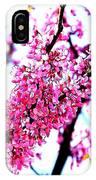 2016-03-18 Redbud Tree In Bloom IPhone Case
