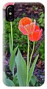 2016 Early May Tall Red Tulips IPhone Case