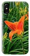 2016 July Garden Daylily Summer Afternoon IPhone Case