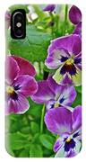 2016 Mid May Pansies 1 IPhone Case