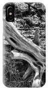 201702250-005k Cedar Stumps 2x3 IPhone Case