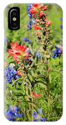 201703300-068 Indian Paintbrush Blossom 2x3 IPhone Case