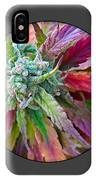Cannabis 420 Collection IPhone Case