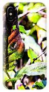 Sunset Bay Beach IPhone Case