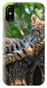 In A Lurch - Bobcat 8 IPhone Case
