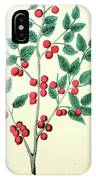 Vintage Botanical Illustration IPhone Case