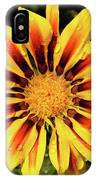 Yellow Gazania IPhone Case