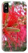 Australia - Red Flower Of The Callistemon IPhone Case