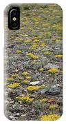 2d07512 Prairie Zinnia In Lost River Range IPhone Case