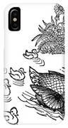Andersen: Ugly Duckling IPhone Case