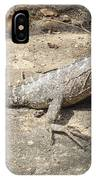Australian Native Animals IPhone Case