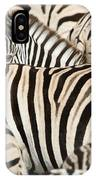 Burchells Zebras Equus Quagga IPhone Case
