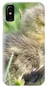 Cute Baby Goose IPhone Case