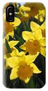 Daffodils In The Sunshine IPhone Case