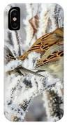 3 Frosty Friends IPhone Case