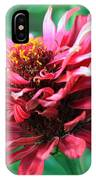 Fuchsia Pink Zinnia From The Whirlygig Mix IPhone Case