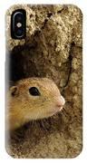 Goround Squirrel  IPhone Case