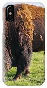Kansas Buffalo IPhone Case