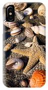 Mix Group Of Seashells IPhone Case